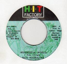 Rico Rodrigues - Wonderful World