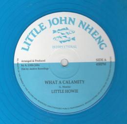 Little Howie - What A Calamity