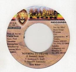 Tony Rebel - Nothing To Prove