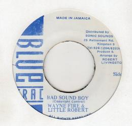 Wayne Fire & Little Robert - Bad Sound Boy