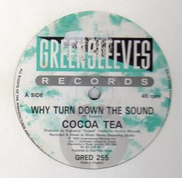 Cocoa Tea - Why Turn Down The Sound